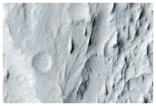 Sinuous Ridges Among Yardangs in Aeolis Region