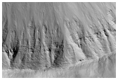 Bright Gully Deposits in A Fresh Impact Crater