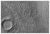 Bizarre Terrain of Hellas Basin Floor