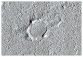 Small Cones in Western Amazonis Planitia