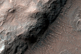 Light-Toned Layers in Ladon Basin