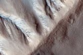 Gullies in North Mid-Latitude Crater