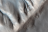 Gullies in North Mid Latitude Crater