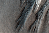 Gullies Incising a Crater Wall