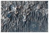 Especially Bright Materials in Candor Chasma