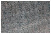 Araneiform Morphology