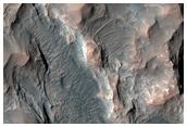 Floor of Sirenum Region Crater
