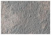 Possible Chloride Salts