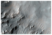 Well-Preserved 15-Kilometer Crater with Gullies and Pitted Ponded Material