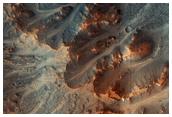 Gullies in Acidalia Planitia Region
