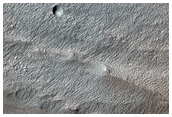 Volatiles and Gullies in Wirtz Crater
