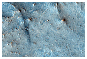 Proposed MSL Rover Landing Site in Nili Fossae Trough