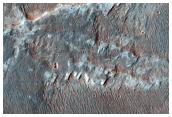 Possible MSL Landing Site Holden Crater