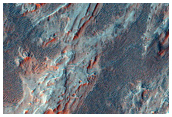 Branching Ridge Forms in Northern Holden Crater