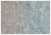 1-2 Kilometer Diameter Craters on Western Elysium Planitia
