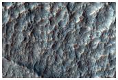 Large Fe-Mg Clay Exposure in Terra Sirenum