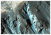 Bright Gully Deposits in Western Hale Crater