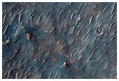 Phyllosilicate Tile Detection Northwest of Hellas Planitia