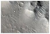 Rootless Cones in Isidis Planitia