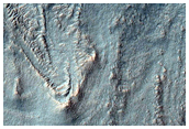 Gullies Cutting Debris Mantle in Crater Wall