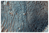 Gullies and Flow Features on Crater Wall