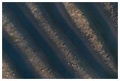 Dune Symmetry