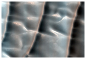 Sample of North Polar Gypsum Dunes