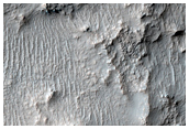 Light-Toned Patterned Ground at Low Latitude