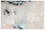 Dark Polar Dunes