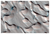 Features and Fans and Polygons on Dunes