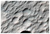 Possible Al-Oh on Crater Floor in Terra Sirenum