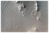 Gullies and Slope Streaks