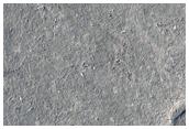 Hummocks in Elysium Planitia Crater