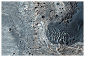 Concentric Structures in Meridiani Planum