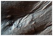 Gully Grab Bag in Crater Wall, Terra Sirenum Region