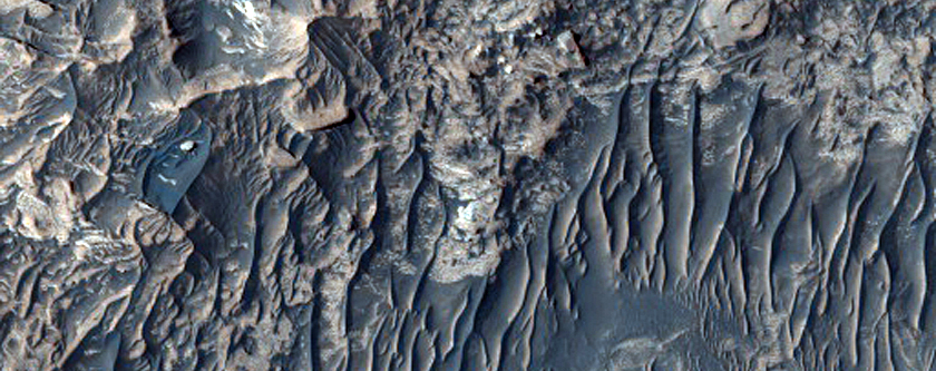 Especially Bright Materials in Candor Chasma