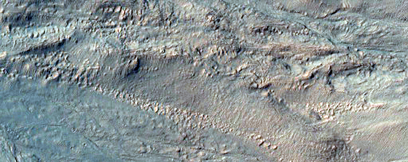 Gullies in Newton Crater