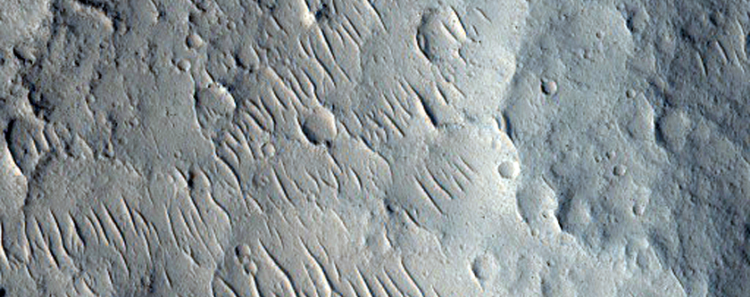 Mesas with Circumferential Depressions Near Kasei Valles