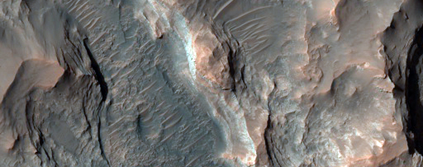 Floor of Sirenum Region Crater