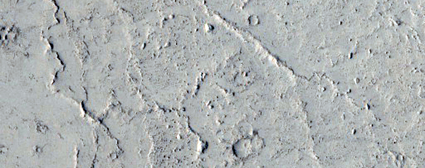 Embayed Crater in Elysium Planitia