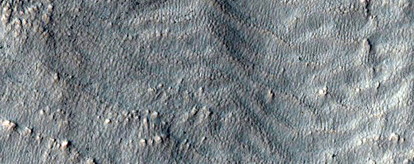 Fresh Crater with Lots of Gullies