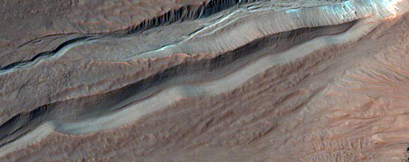 Bright Slope Deposits Associated with Gullies in Hale Crater