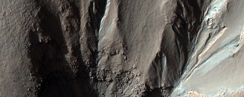 High-Latitude Gully