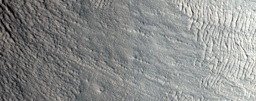 Gullies in Crater