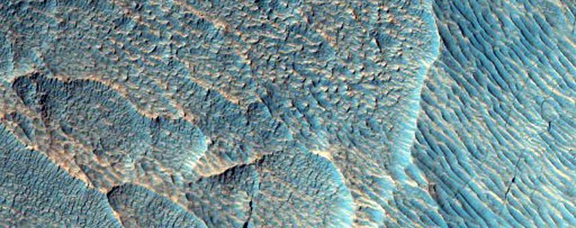 Gullies in Crater Near Hellas Planitia