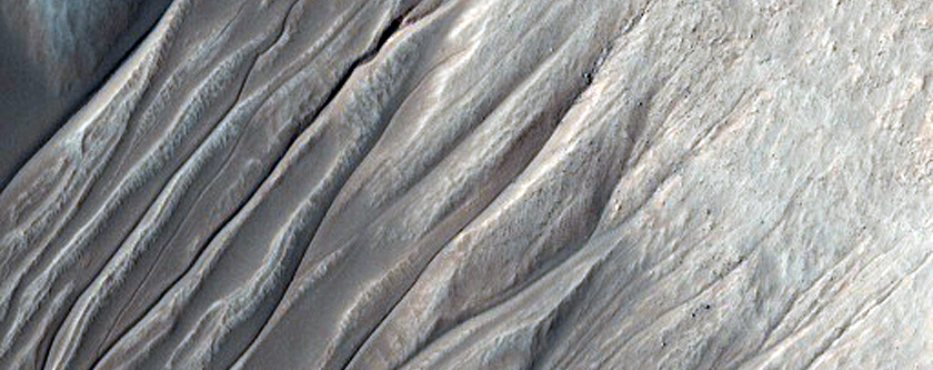 Two Types of Gullies Identified in West Half of Crater
