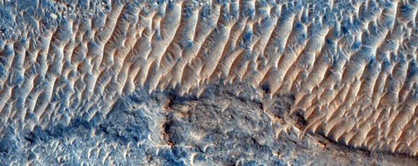 Sinuous Ridges in Northeast Meridiani Planum