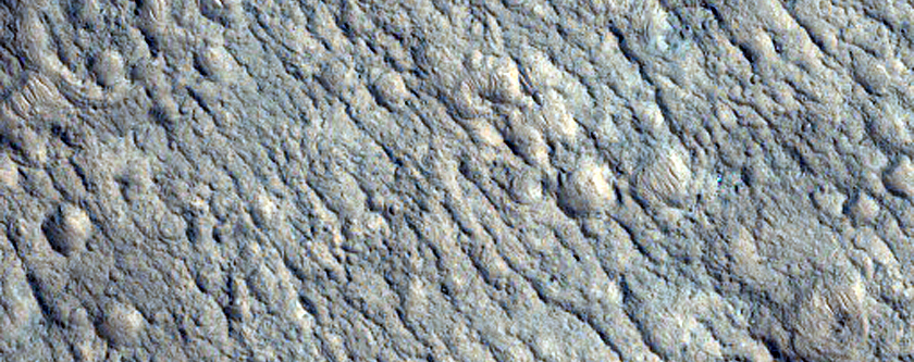 Floor of Tibrikot Crater