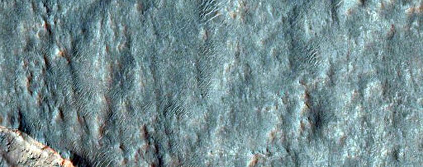 Possible Olivine-Rich Terrain in Ejecta of a Gullied Crater