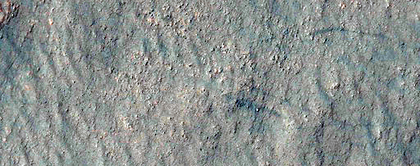 New Impact Site in Western Argyre Planitia